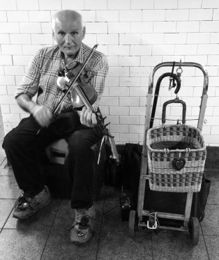 Old Man Musician